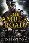The Amber Road: Warrior of Rome: Book 6 by Harry Sidebottom (Paperback / softback, 2014)