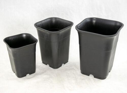 3 Mix Square Plastic Cascade Bonsai Black Succulent /& Orchid Planter Cactus