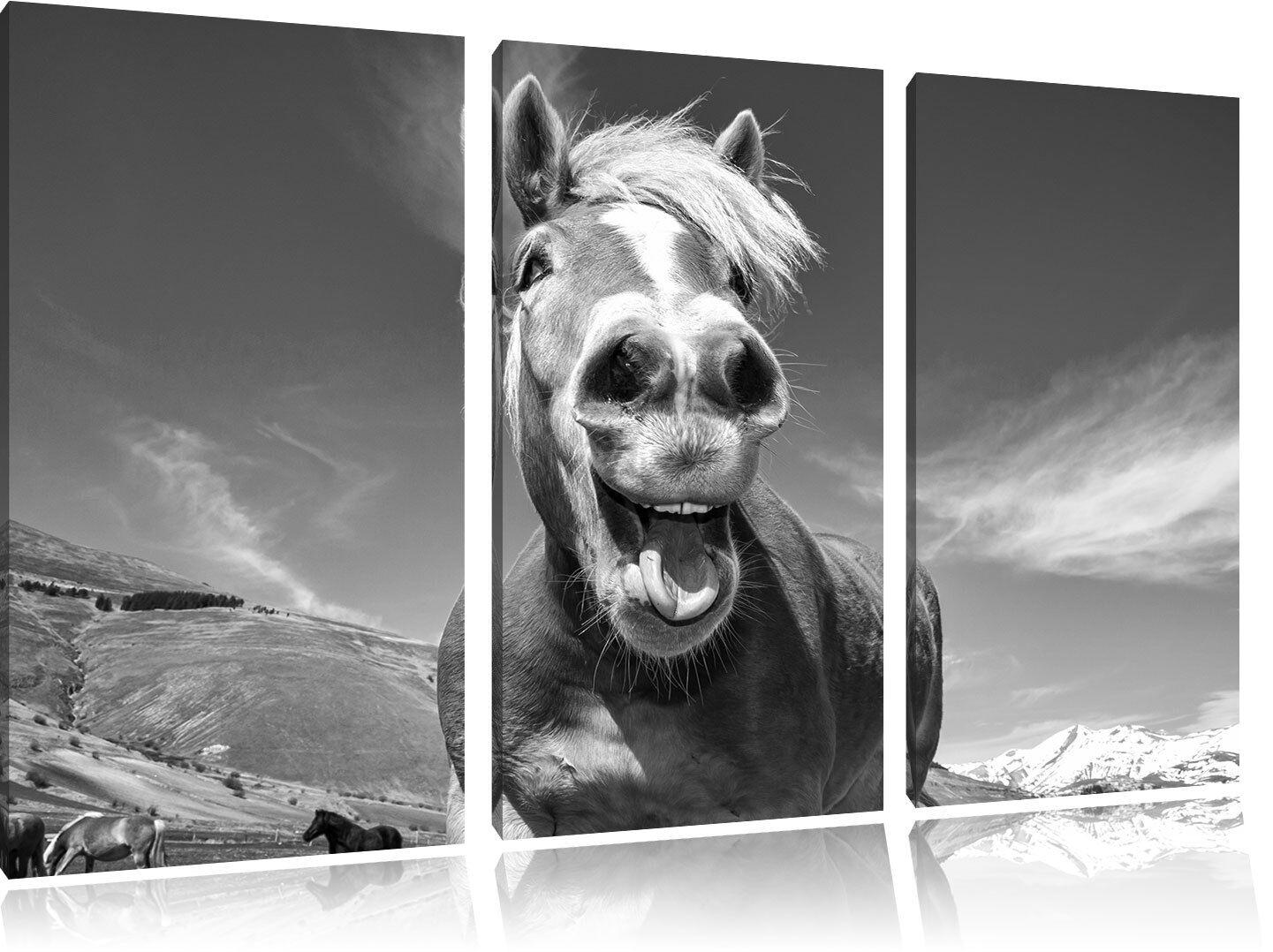 Diverdeente Cavallo Nella Natura Arte B&w 3-Teiler Quadro su Tel Decorazione