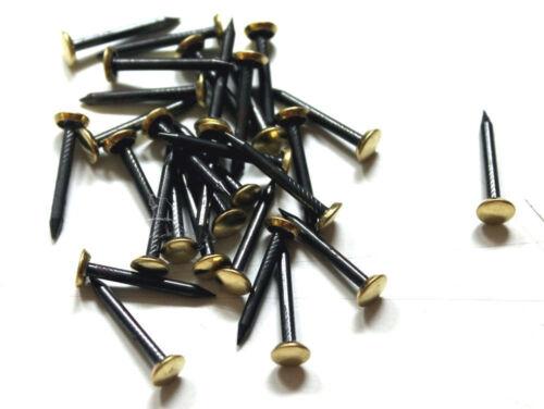30 Stahlbildernägel 30 mm Bildernägel Messingkopf Stahlnägel Nagel gehärtet