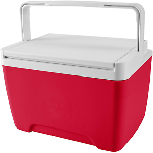 Personal Cooler Food Ice Chest Lunch Box 9 Quart Small Picnic Camping