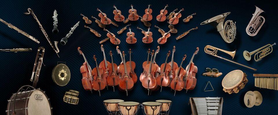 Vienna Symphonic Libraries, VSL VI/Synchron/MIR Pro,