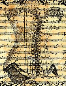 framed print vintage french corset on old music paper. Black Bedroom Furniture Sets. Home Design Ideas