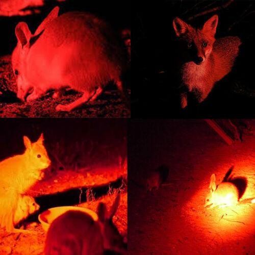 350 Yard LED Zoomable Taschenlampe Jagd AKKU Gewehr-Licht Montiere Schalter Lamp