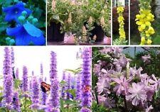 Schmetterlings-Blumen kleine Geschenke für Frauen Mädchen Kinder zu Weihnachten
