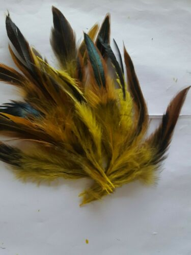 """FEATHERS  10 X  YELLOW 2 TONE 4/"""" 6/"""" Rooster Cock Tail Feathers UK"""