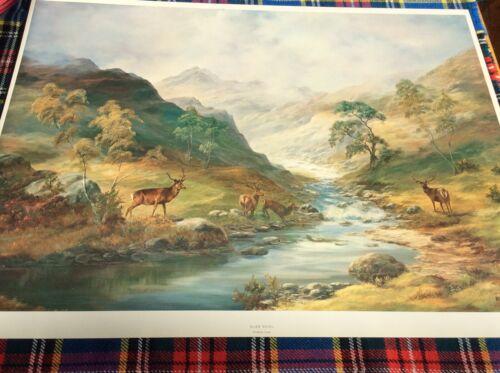 Red Deer scene /'Glen Shiel/' by Prudence Turner Stunning Scottish Highland Glens