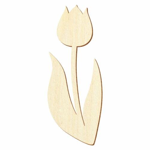 Bois tulipe déco bricolage 5-50 cm