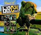 Stars of Big Cat Diary by Jonathan Scott, Angela Scott (Hardback, 2009)