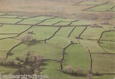 Postcard: Just Yorkshire - Swaledale