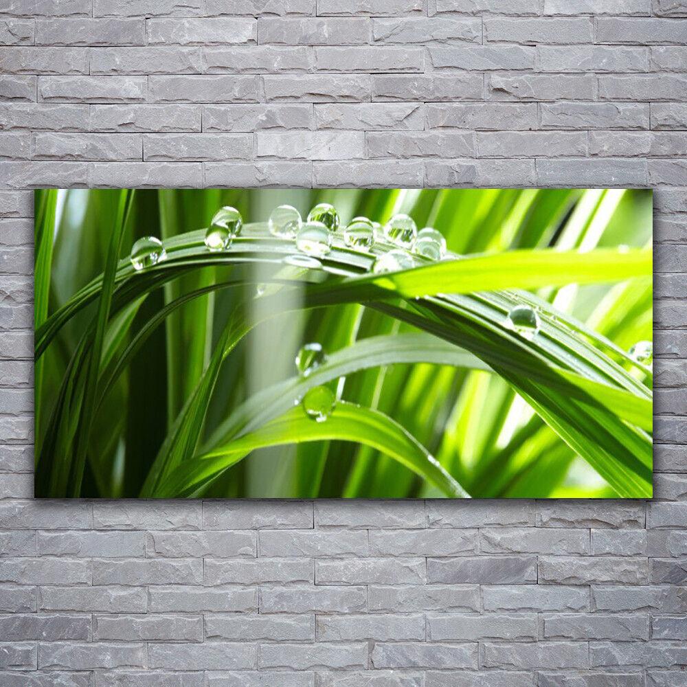 Photo sur toile Tableau Image Impression 120x60 Floral Herbe Rosée