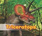 Triceratops by Daniel Nunn (Hardback, 2014)