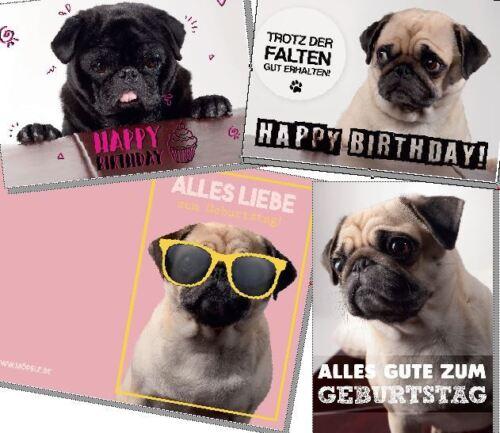 Geburtstagskarten von Möpsle - Happy Birthday - Glückwunsch - Mops - Pug