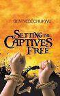 Setting the Captives Free by Ben Nebechukwu (Paperback / softback, 2013)