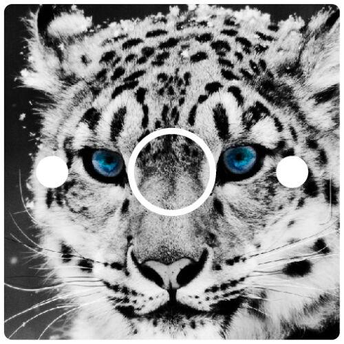 White Tiger Light Switch Power Socket Sticker vinyl skin cover decal leopard zoo