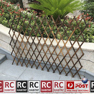 750mm lightweight garden climbing plant expandable lattice screen