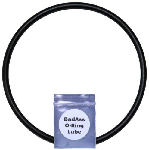Pentair 59000600, Titan Standpipe O-Ring with Lube