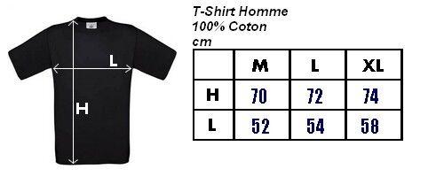 Maillot T-Shirt PLOUHINEC BREIZH Bretagne Breton
