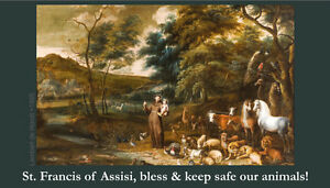 Details about St  Francis Blessing of Animals Prayer Card (wallet size)