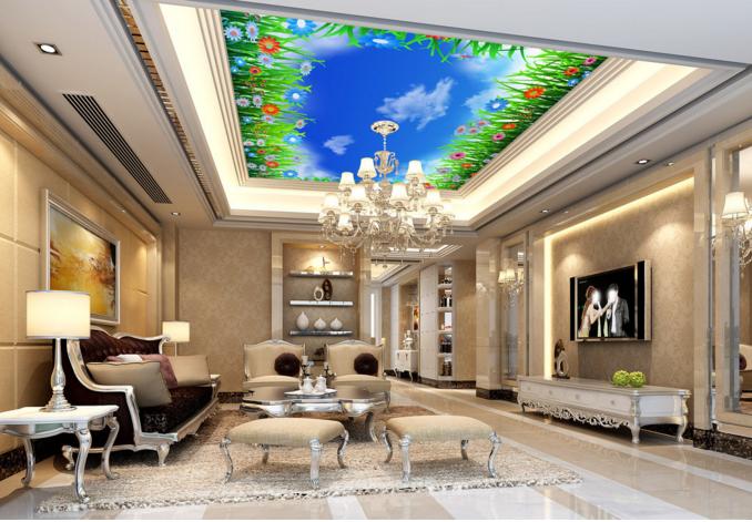 3D 3D 3D Sky Prairie 42 Ceiling WallPaper Murals Wall Print Decal Deco AJ WALLPAPER UK e8d92e