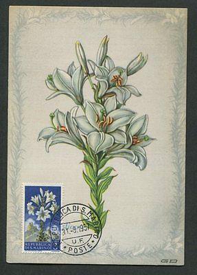 Maximumkarten Briefmarken RüCksichtsvoll San Marino Mk 1957 Flora Lilie Lily Maximumkarte Carte Maximum Card Mc Cm D8048 Im Sommer KüHl Und Im Winter Warm