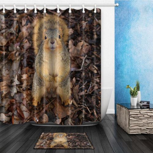 "Animal Squirrel in Fall Leaves Waterproof Fabric Shower Curtain Bathroom Mat 71/"""
