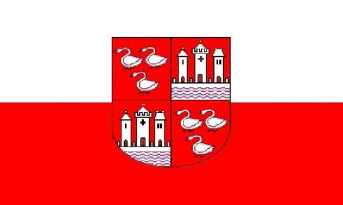Fahne Flagge Zwickau 20 x 30 cm Bootsflagge Premiumqualität