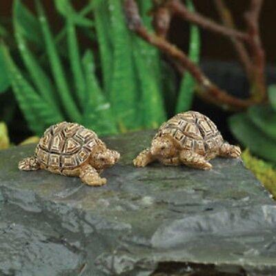 Miniature Figurine FAIRY GARDEN ~ Turtle Tortoise with Baby ~ NEW