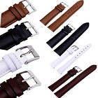 Mixed Colors Genuine Leather Watch Band Strap Bands Pin 12/14/16/18/20/22/24 mm