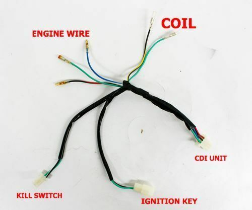 complete kick start engine wiring harness loom 50cc 125cc 140cc pitpro dirt bike Ford Wiring Harness