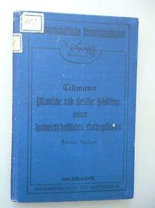 Pflanzliche-tierische-Schaedlinge-landwirtschaftlichen-Kulturpflanzen-1911