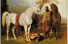 LANDSEER ALFRED DE DREUX ARABIAN HORSE 3 JUMBO FRAMEABLE ART PAINTING POSTCARDS