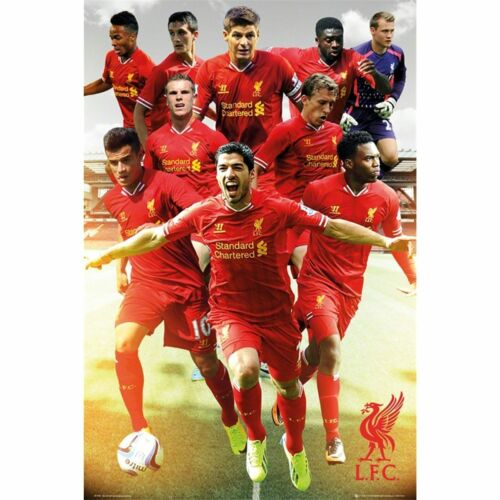 """Liverpool FC soccer poster 24x36/""""  team collage with Luis Suarez"""