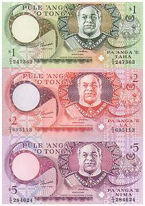 1995-1-2-amp-5-Pa-039-anga-039-e-Tonga-Banknotes-Pick-31-32-amp-33-Uncirculated