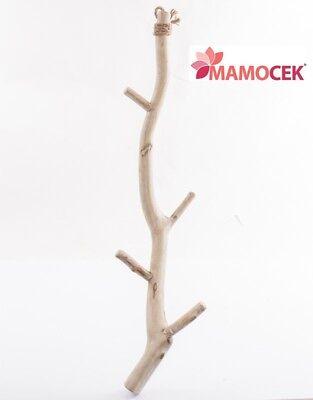 Attaccapanni Da Appendere In Legno Ramo H100 Moderno Shabby Naturale Pezzi Unici Curare La Tosse E Facilitare L'Espettorazione E Alleviare La Raucedine