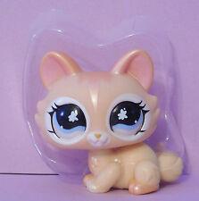 Littlest Pet Shop #870 Shimmer Opalescent Peach Persian Orange Kitten Cat New
