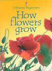 How Flowers Grow by Usborne Publishing Ltd (Paperback, 2003)