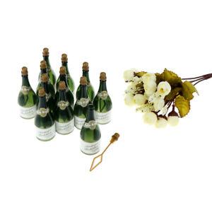 12X-Set-Bouteille-De-Champagne-Bulle-De-Mariage-De-Table-De-Fete-Faveur-RK