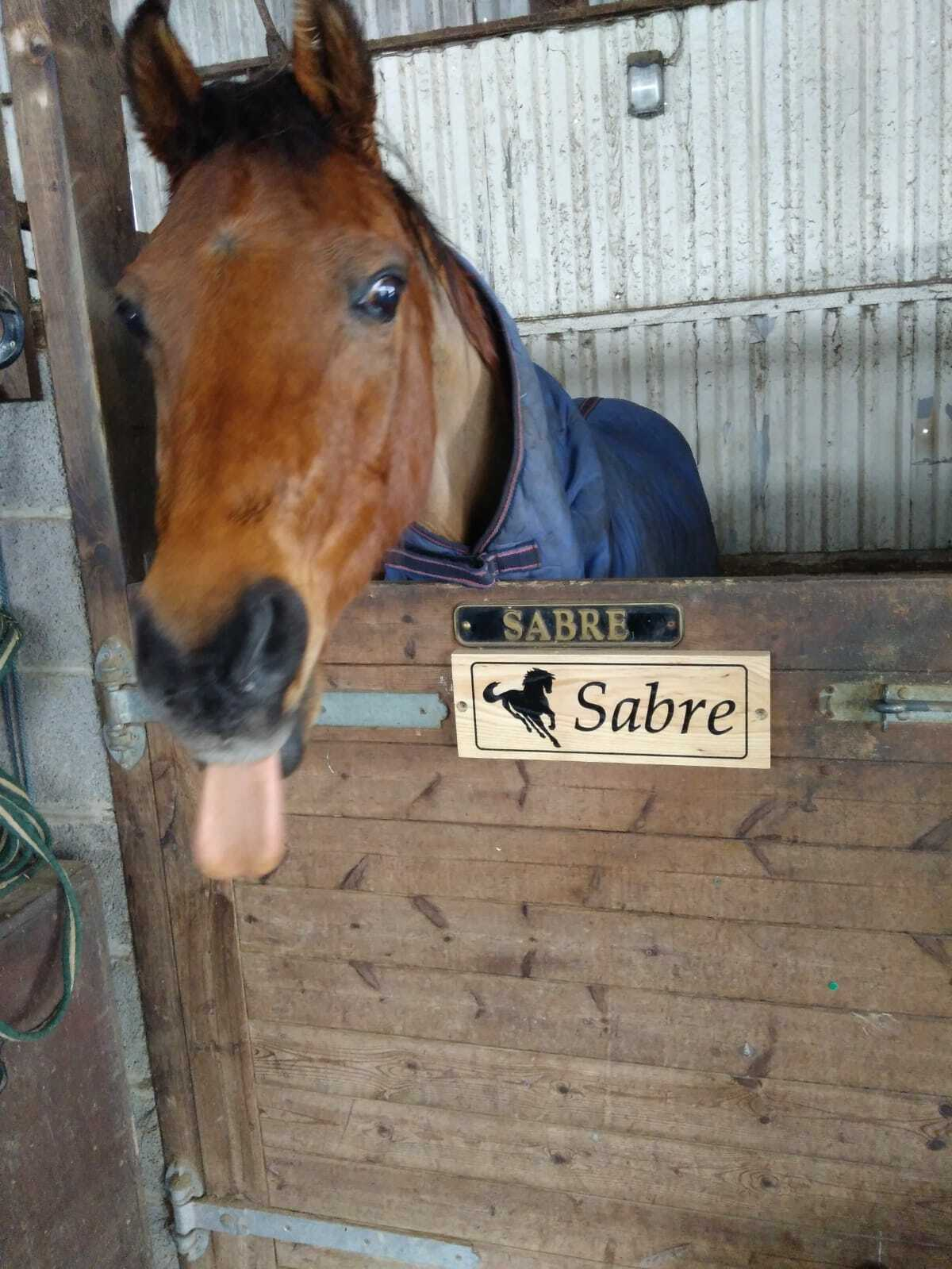 Stable Sign, Stall  Plaque, Horse name plate  great selection & quick delivery