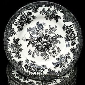 Royal-Stafford-4-Asiatic-Pheasant-Black-Salad-Plates-8-5-inch-Toile-3-Sets-Avail