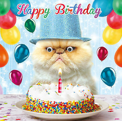 "Birthday Card ""Happy Birthday"" Funny Animal Grumpy Cat Goggly 3D Moving Eyes"