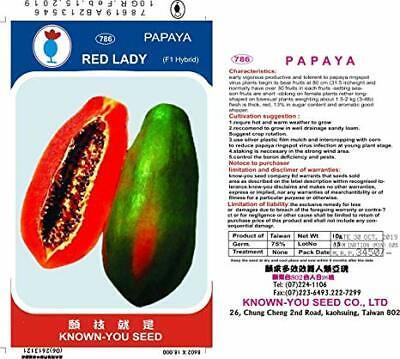 Seedsown RED Lady Papaya Seeds Seed