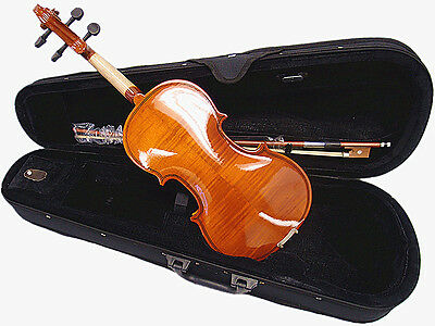 Beautiful 4/4 Student Violin +Case +Bow +Rosin +String Set /Flamed back Looking