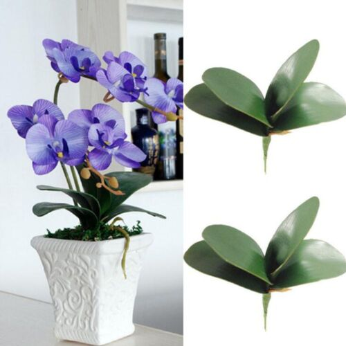 Plastic Fake Flowers Green Leaves Artificial Butterfly Orchid Leaf Silk Leaf