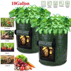 Potato Planting Grow Bag Gallon 7 //10 Planter Growing Garden Vegetable Container