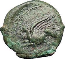 "Alaisa ""Kainon"" in Sicily  360BC Rare Ancient Greek Coin Griffin Horse  i28575"