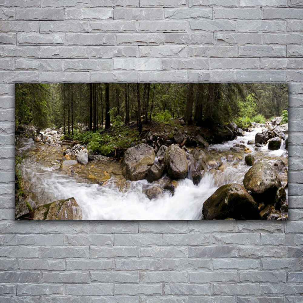 Verre Imprimer Wall Art Image 120x60 photo FOREST BROOK Pierres Nature