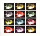 Exploring the Shadows [Single] by Trembling Blue Stars (CD, Nov-2007, Elefant)