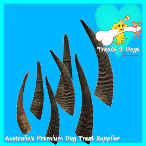 GOAT HORNS 8 Small 40g to 60g TREATS 4 DOGS Premium Quality Tooth Cleaner