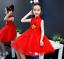 Chinese New Year Style Toddler Girls Sleeveless Red Cute Fancy Tutu Dress ZG9